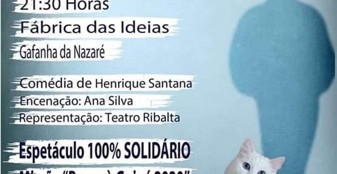 Espetáculo Solidário – O Gato