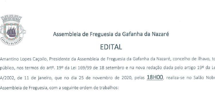 Assembleia de Freguesia da Gafanha da Nazaré – 25 de novembro de 2020