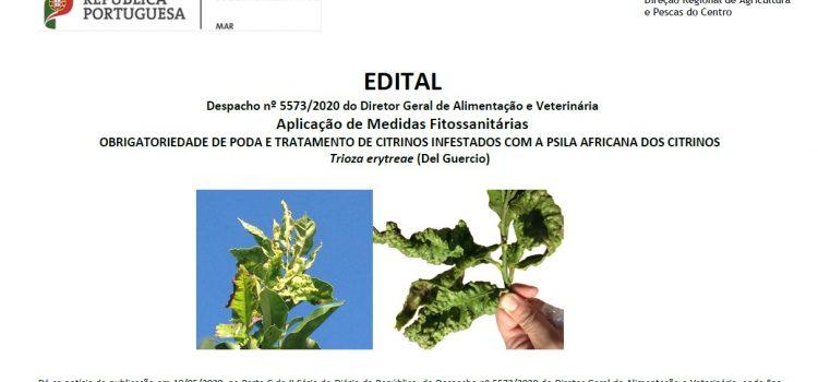 Edital – Obrigatoriedade de poda e tratamento de citrinos infestados